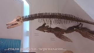 Динозавры (Размышления в Королевском музее в Торонто)
