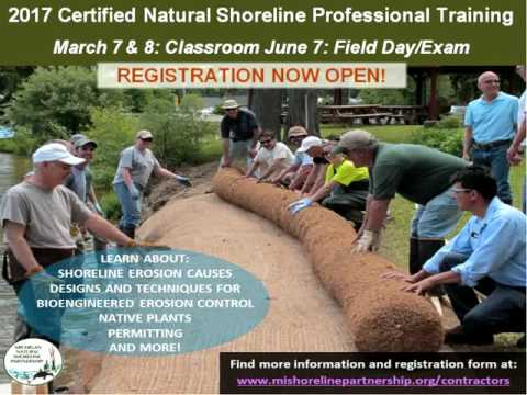 Promoting Natural and Healthy Shorelines for Protecting Lakes: The Current Webinar 29
