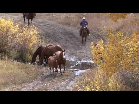 Ken McNabb TV Show - Ranch episode