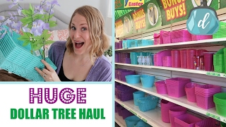 HUGE DOLLAR TREE HAUL!