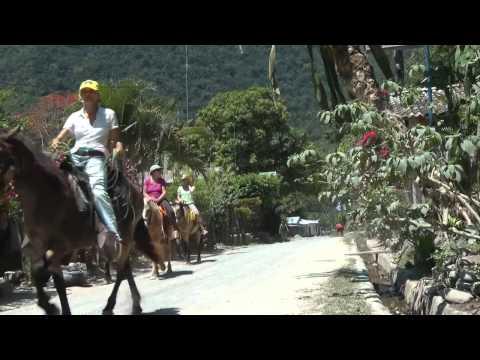 Omega Tours Horsesback Riding