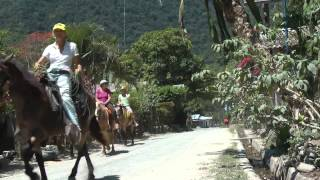 Omega Tours Horsesback Riding