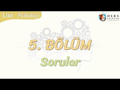5. BÖLÜM / SORULAR