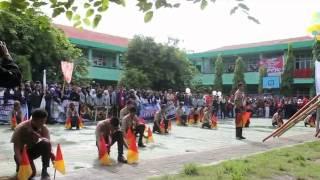 [paraga] parade semaphore n pinguin dance