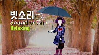 [빗소리] 비오는 주말