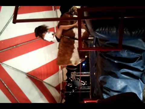 video-2010-07-17-21-59-13