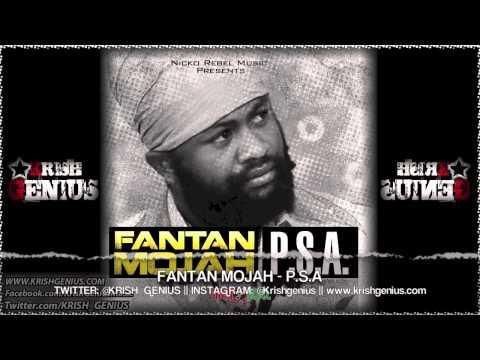 Fantan Mojah - P.S.A - July 2013