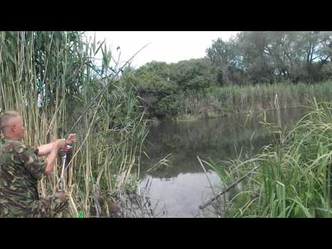 ловля на канале северский донец