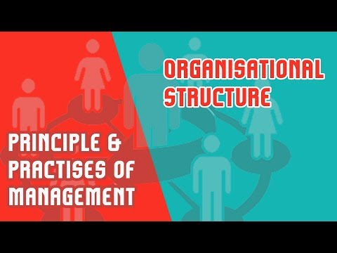 Organisation Structure | The Organisational Chart | PPM |  Module 4 | Part 2