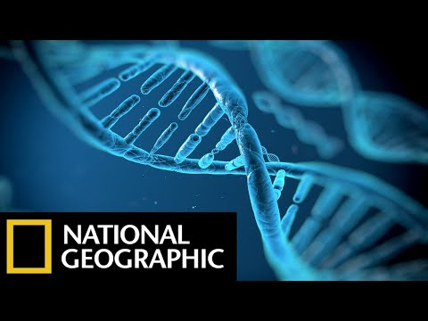 DNA Genesis — The Children Of Adam — National Geographic Documentary Films — Full HD Documentaries