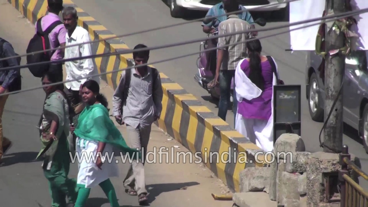 Marathahalli : Gateway to ITPL by WildFilmsIndia