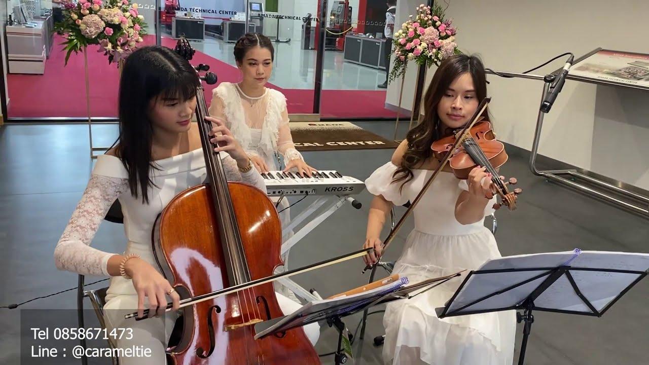 วงดนตรีงานแต่ง Caramel Tie - String Trio