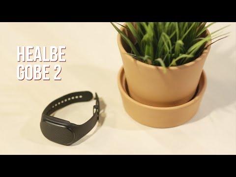 Тест и опыт использования HEALBE GOBE 2: счётчик калорий для похудения - реально?
