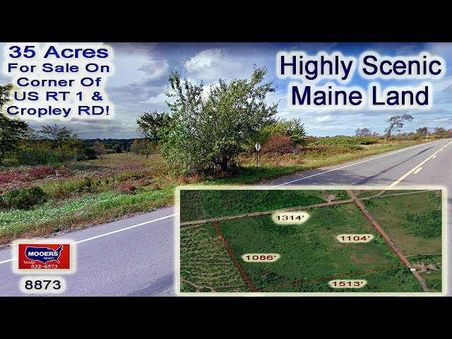 Land In Maine For Sale | High, Dry, Big View 35 Acres MOOERS REALTY