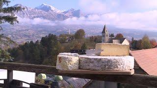 Terroir : la bonne tomme des montagnes