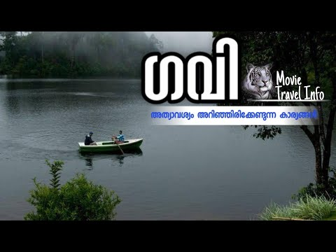 GAVI KERALA - GUIDE - All you want to know for a Gavi trip