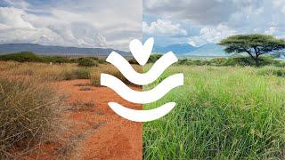 Virtual Launch Gala - UN Decade on Ecosystem Restoration -#WorldEnvironmentDay