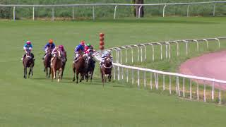 Vidéo de la course PMU PRIX DE FRAUENFELD