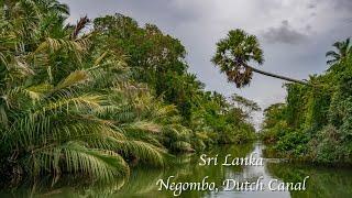 SRI LANKA, Negombo Dutch Canal