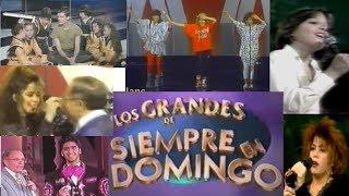 """El DEBUT de las Grandes Estrellas en """"Siempre en Domingo"""""""