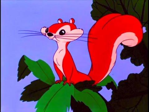 Samba of the Squirrel