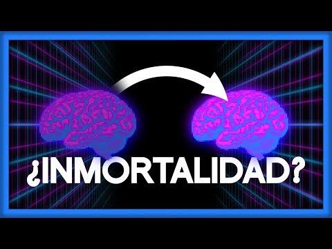 ¿Moverías Tu Mente A Otro Cuerpo Para Ser Inmortal? | La Ciencia De Altered Carbon (sin Spoilers)