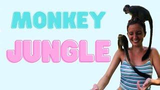 Monkey Jungle, Dominican Republic
