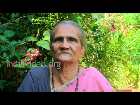 Native medicine for swollen udder of cows - Satavari