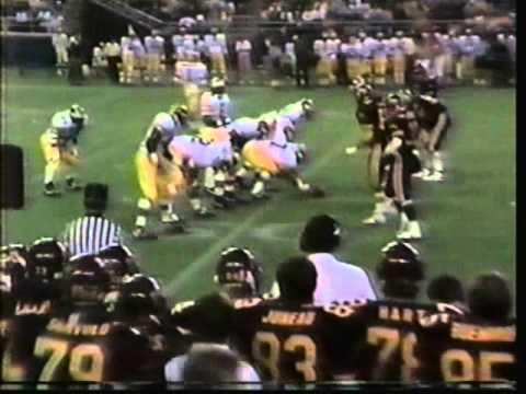 1987: Michigan 30 Minnesota 20