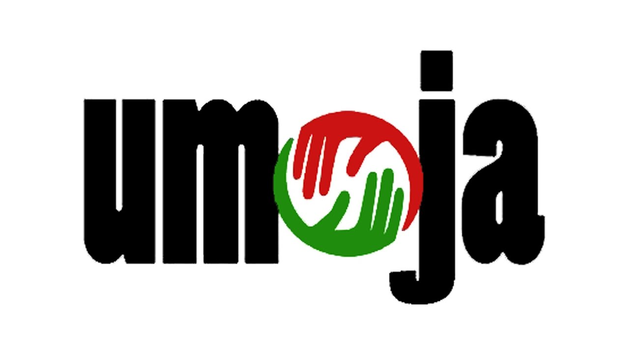 2021 Be More Award - UMOJA Arts & Cultural, Inc.