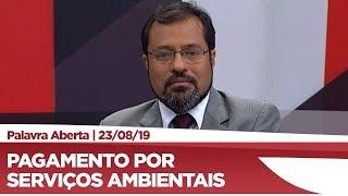Camilo Capiberibe quer a regulamentação de pagamentos por serviços ambientais
