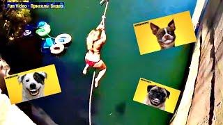 Приколы смешное видео 2016 Подборка прикольных роликов 67