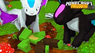 TINY TURTLE is GONE?! - Minecraft Dragons
