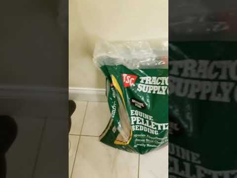 how to keep cat litter clean