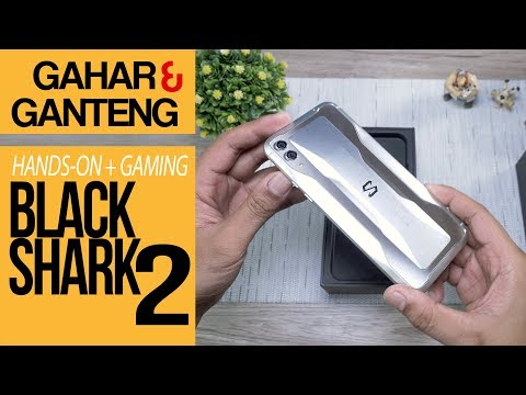Black Shark 2 Hands On Review & Gaming Test Indonesia