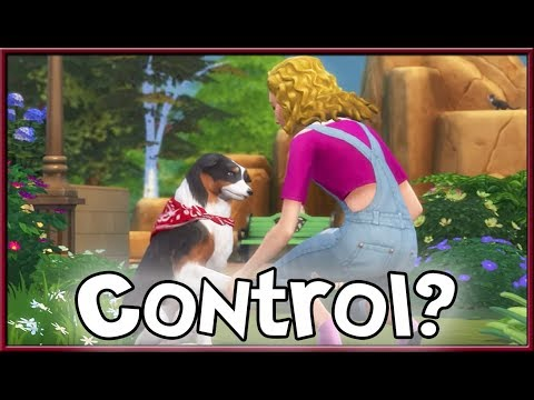 The Sims Info/Thoughts: Why We Can't Control Pets, Laundry Prototype!