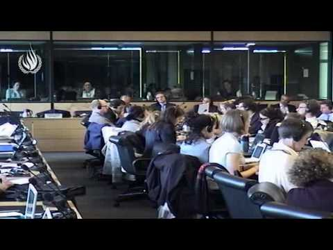 Committee against torture - Special Review on Syria