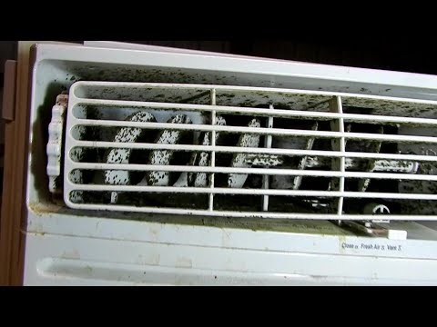 Cleaning mold out of a window AC unit