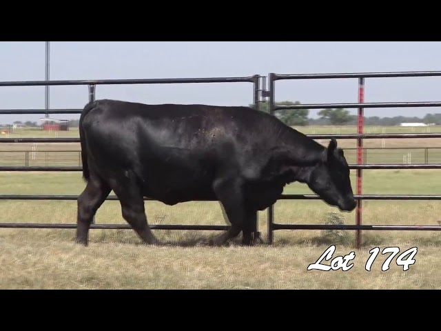 Pollard Farms Lot 174