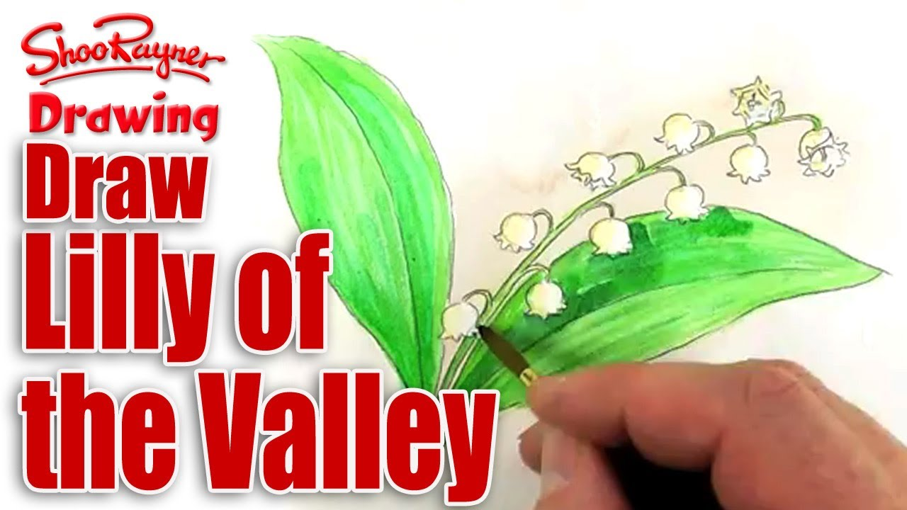 How to draw and paint lily of the valley spoken tutorial youtube izmirmasajfo