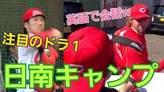 やっと日南へ!!!注目のドラ1中村奨成選手を見に行ってきました! 中村奨成 検索動画 16