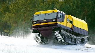 Трактор шоу Чебоксары