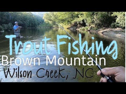 Wilson Creek, NC Trout Fishing