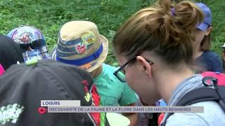 Association Ville Verte : découverte de la faune et la flore