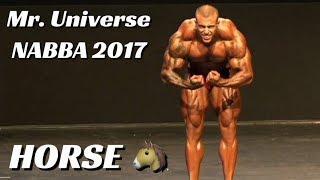 Horse MD no Mr Universe NABBA 2017 - Apresentação individual e confronto do Pré-Julgamento