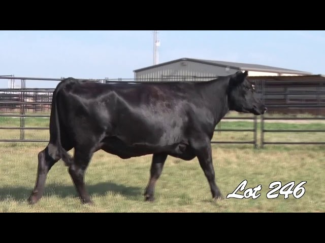Pollard Farms Lot 246