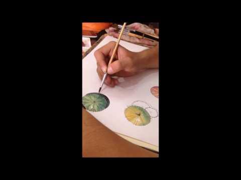 Diễn họa cây - By Tín Trung