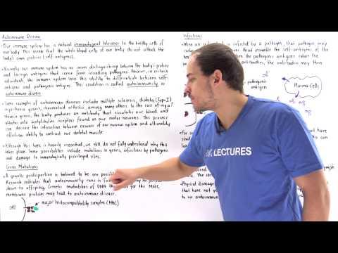 Autoimmunity (Autoimmune Diease)