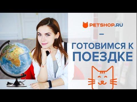 Вопрос: Как перевести собаку и кота на праноедение?