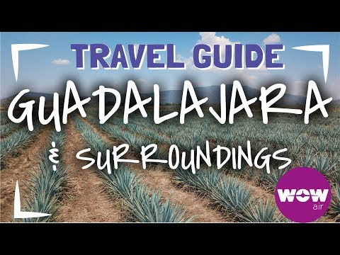 THINGS TO DO IN GUADALAJARA MEXICO | SHORT TRAVEL GUIDE